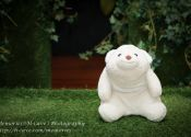 Daryl & Karen ROM Solemnization Photography bear sitting on grass @ Registry Of Marriage